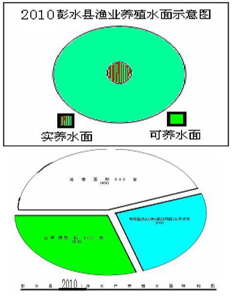 鲢鱼卵巢结构图